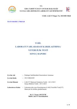 2015-MKB-005-LAK-YT SonucRaporu
