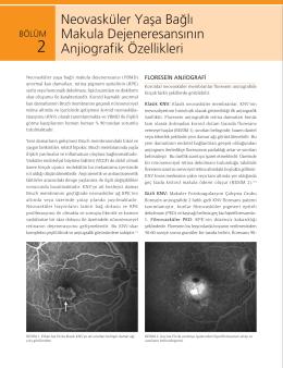 Bölüm 2 - Istanbul Retina