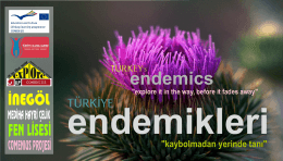endemics - comenius turkey-italy-latvia