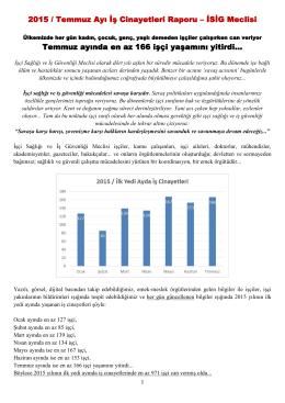 Raporu PDF biçiminde okumak için tıklayınız