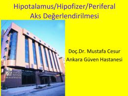 Hipotalamus/Hipofizer/Periferal Aks De erlendirilmesi