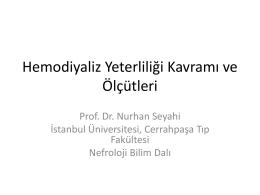 Nurhan SEYAHİ - Nefroloji Kış Okulu 2015