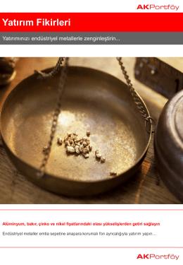 Yatırım Fikirleri - Ak Portföy Yönetimi
