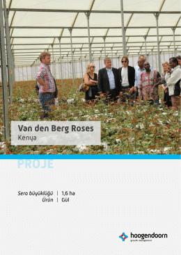 Van den Berg Roses Hakkında