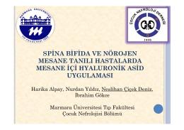 Spina Bifida ve Nörojen Mesane Tanılı Hastalarda Mesane İçi