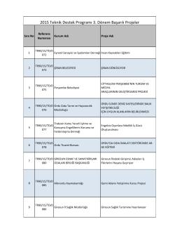 3. Dönem Başarılı Projeler Listesi