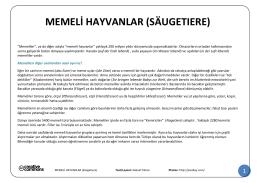 MEMELİ HAYVANLAR (Säugetiere