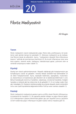Bölüm 20 - Fibröz Mediyastinit