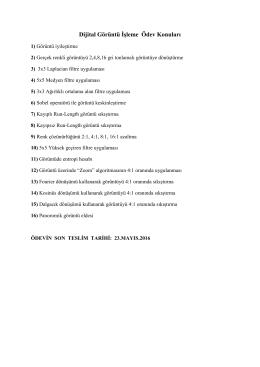 Dijital Görüntü Đşleme Ödev Konuları