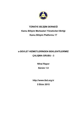 Çalışma Grubu Raporu - TBD Kamu-BİB