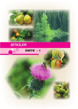 bitkiler 1