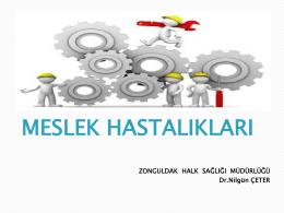 meslek hastalıkları - Zonguldak Halk Sağlığı Müdürlüğü