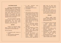 Özel Öğrenme Güçlüğü 2015-1