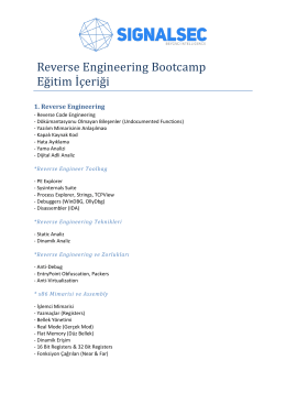 Reverse Engineering Bootcamp Eğitim İçeriği