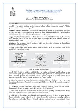 Akrilik Boyalar - Türkiye Yazma Eserler Kurumu Başkanlığı