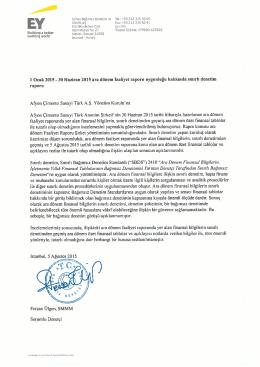 30/06/2015 Yönetim Kurulu Faaliyet Raporu