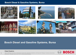 Bosch Diesel & Gasoline Systems, Bursa