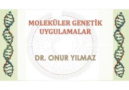 c. - Dr. Onur YILMAZ