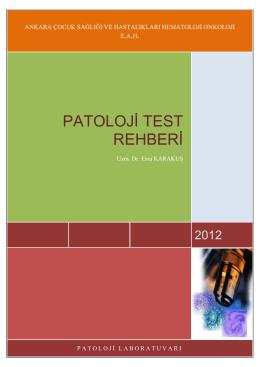 PATOLOJİ TEST REHBERİ