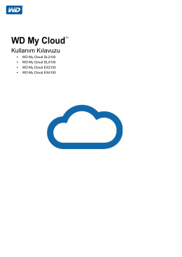 WD My Cloud Expert/Business Storage Drive User