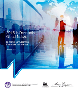 2015 İç Denetimin Global Nabzı