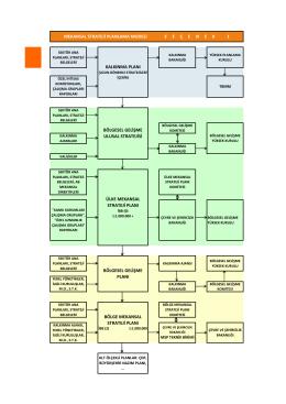 MSP Çalıştayları Model Alternatif Şemaları