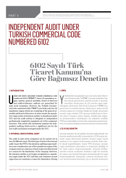 Independent AudIt under turkIsh CommerCIAl Code numbered 6102