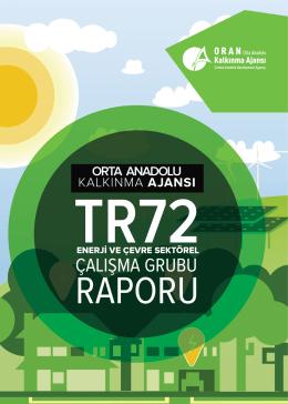 TR72 Enerji ve Çevre Sektörel Çalışma Grubu Raporu