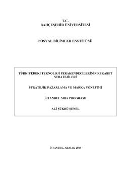 T.C. BAHÇEŞEHİR ÜNİVERSİTESİ SOSYAL BİLİMLER ENSTİTÜSÜ