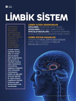 LİMBİK KLİNİK SENDROMLAR Limbik Sistem Hasarları
