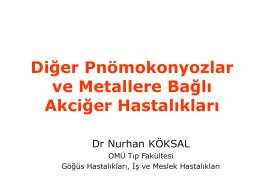 Diğer Pnömokonyozlar ve Metallere Bağlı Akciğer Hastalıkları