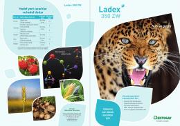 Ladex 350 ZW