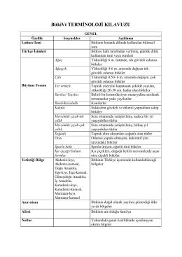 BitkiVt Terminoloji Klavuzu/Yardım