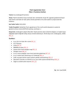 Flash Uygulamaları Dersi Ödev