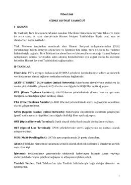 FiberLink HST - Türk Telekom