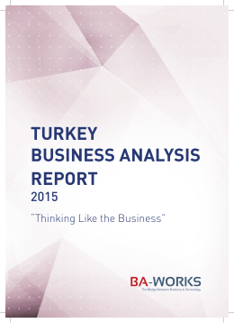 TURKEY BUSINESS ANALYSIS REPORT