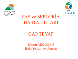 PAS ve SEPTORİA HASTALIKLARI GAP TEYAP
