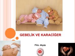 Prof. Dr. Filiz Akyüz