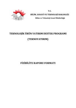 (teknoyatırım) fizibilite raporu formatı
