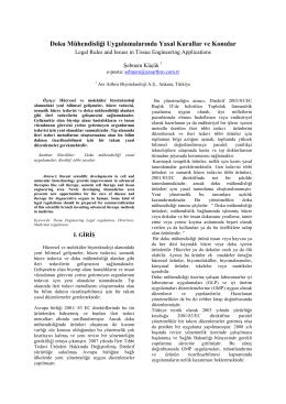 Doku Mühendisliği Uygulamalarında Yasal Kurallar ve