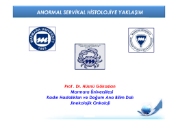 Prof . Dr. Hüsnü Gökaslan - Jinekolojik Onkoloji Derneği