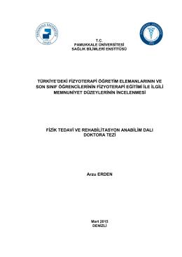 fizik tedavi ve rehabilitasyon anabilim dalı doktora tezi türkiye`deki