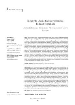 İneklerde Uterus Enfeksiyonlarında Tedavi Seçenekleri
