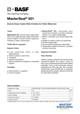 MasterSeal® 501