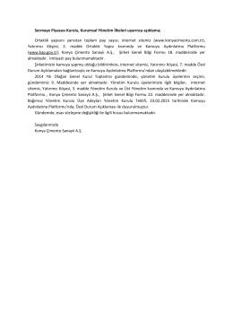 Sermaye Piyasası Kurulu, Kurumsal Yönetim