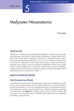 Bölüm 5 - Mediyasten Nöroanatomisi