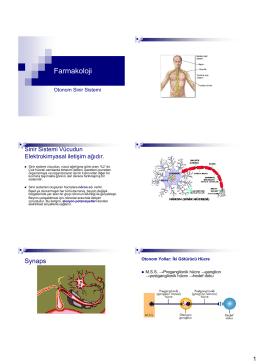Farmakoloji 4 Otonom sinir sistemi