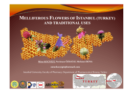 melliferous flowers of istanbul (turkey) and traditional uses