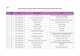 EK-2 Sosyal Sorunların Çözümünde Yenilikçi Yöntemler Mali