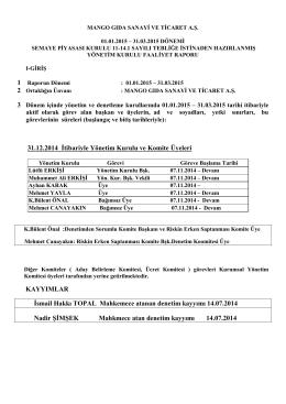 Yönetim Kurulu Faaliyet Raporu 11.05.2015